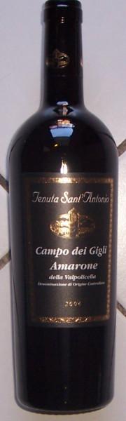 Amarone Della Valpolicella Campo Dei Gigli 2013 Tenuta Sant Antonio