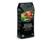 Espresso Universal 500 g.Ganze Bohnen 100% Arabica- 8 Pak. auf lager