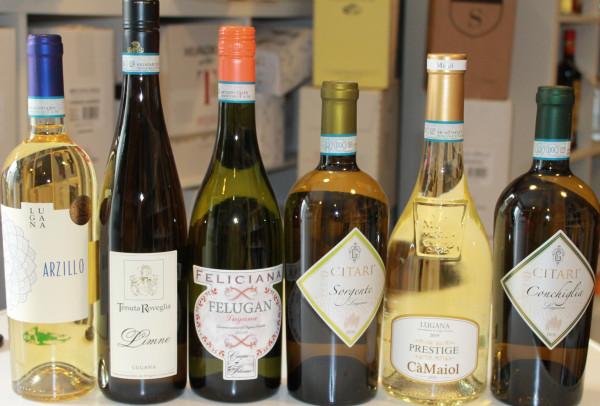 6er Wein Probierpaket Lugana bestehend aus 6 Sorten trockener Weißweine 6x0,75L