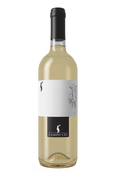 Pinot Bianco Campo Cre Casa Baccichetto IGT marca trevigiana
